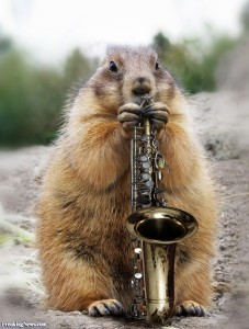 Groundhog-Playing-a-Saxophone--91969